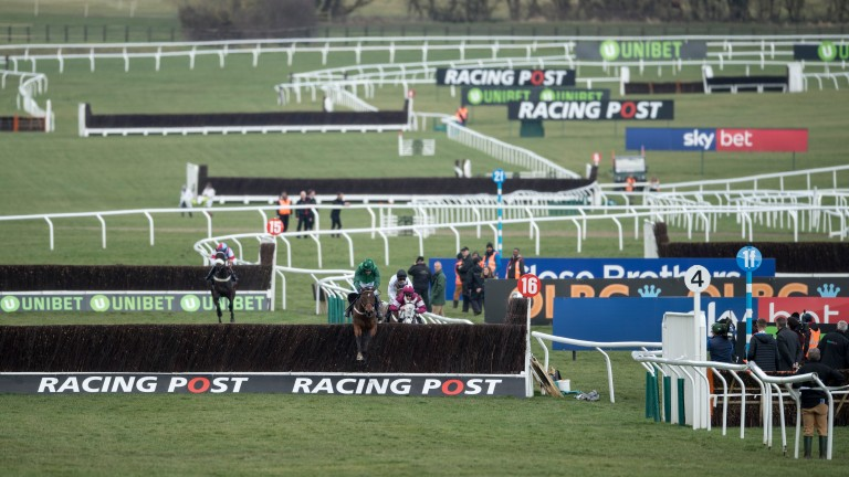 Footpad takes the final fence in last year's Arkle. The fence that precedes it is being moved ten yards further away from the bend