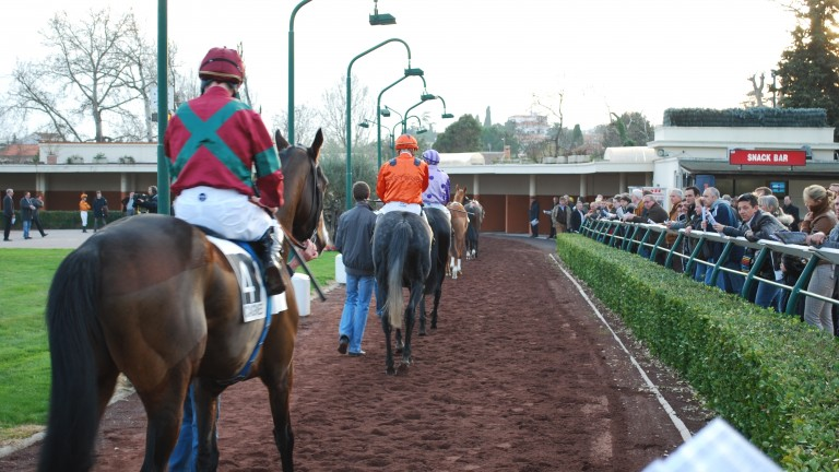 Cagnes-sur-Mer: Michael Bell and Archie Watson saddle runners at the French track on Sunday