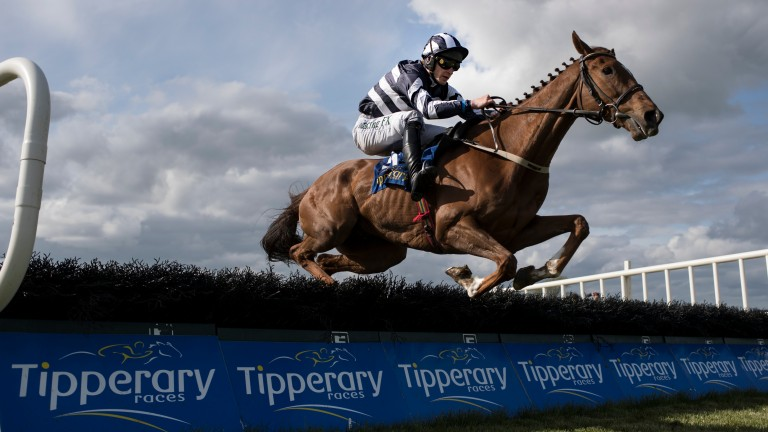 Prince D'Aubrelle en route to victory at Tipperary in May.