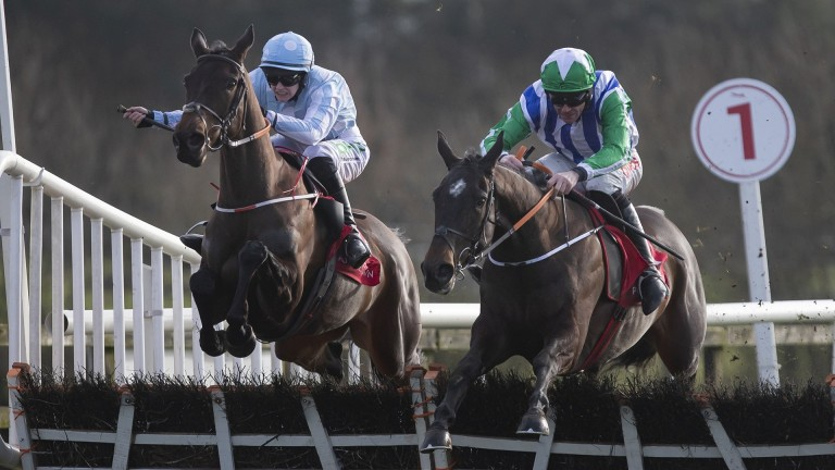 Sinoria: Henry de Bromhead's mare (left) won at Punchestown this month