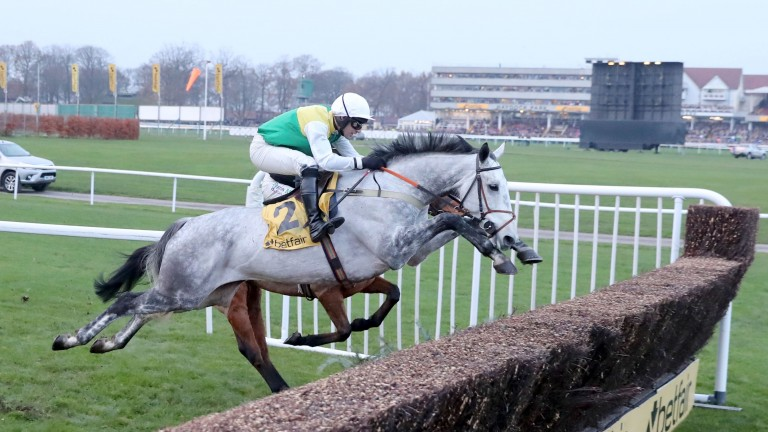 Vintage Clouds: among confirmations for the Scottish Grand National