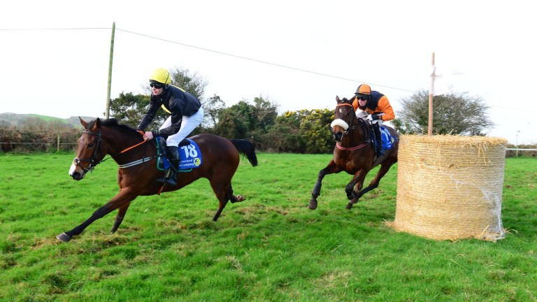 Theflickeringlight leads into the straight at Aghabullogue