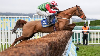 Definitly Red: faces one rival in the Malcolm Jefferson Memorial Chase at Kelso