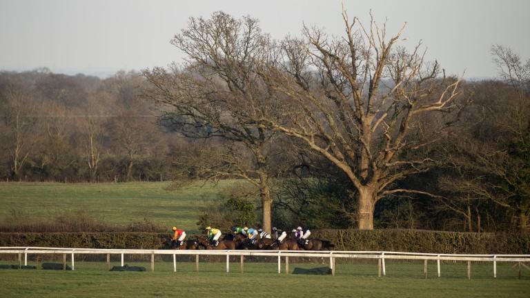 Plumpton: racing on Monday