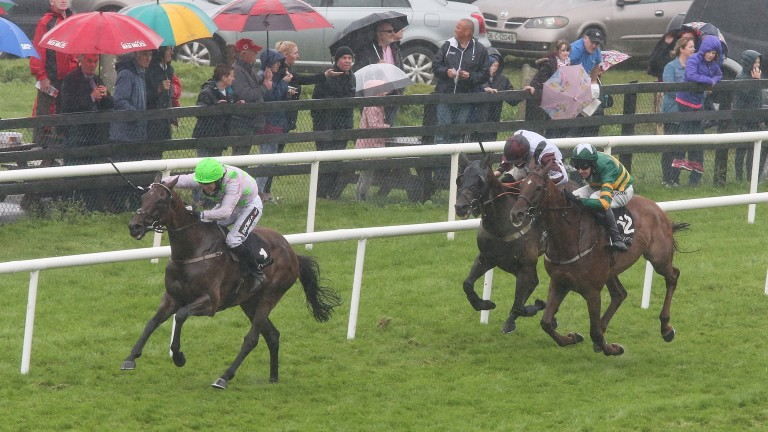 Leoncavallo (wearing blinkers in third) finished third in the Galway Hurdle in August