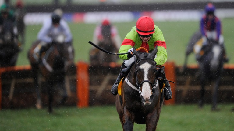 Our Conor: the ill-fated Triumph Hurdle winner launched Jeremy's reputation as a jump sire