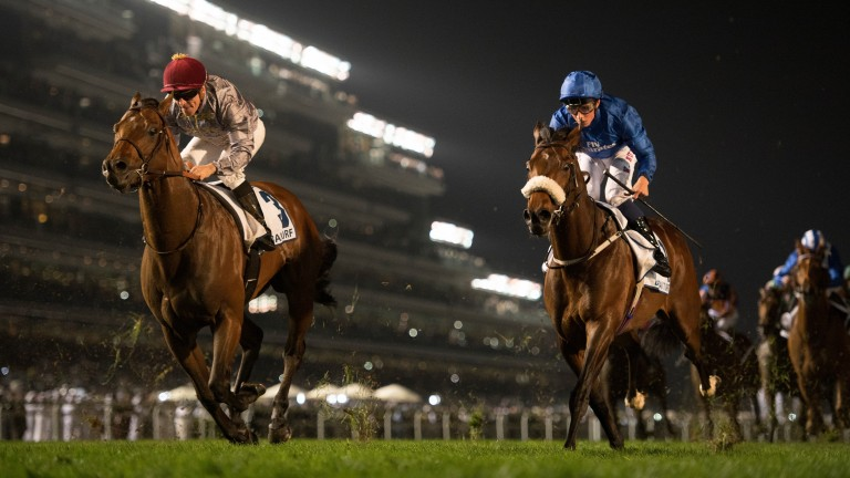 Ribchester (right): Jessica McLernon travelled to Dubai with Richard Fahey's star colt