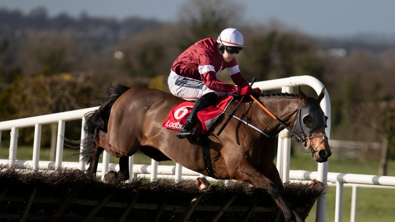 Tiger Roll: won the Boyne Hurdle in 2019 but was well beaten this time around