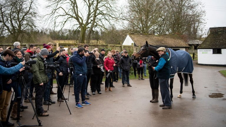 Nicky Henderson shows Altior off to the assembled press at Seven Barrows on Monday