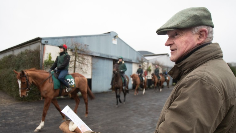 Willie Mullins: saddles Lord North at Clonmel on Thursday