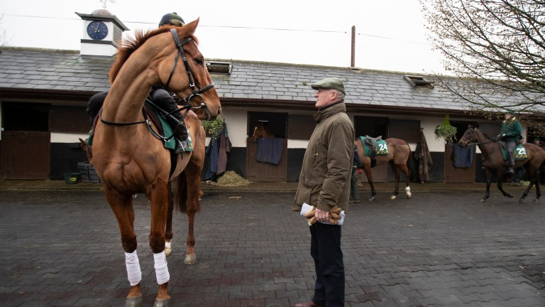 Melon is one of two runners for Willie Mullins in the Punchestown Champion Hurdle