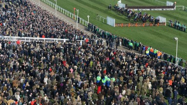 The Orchard will be a brand new area for racegoers to enjoy Cheltenham Festival