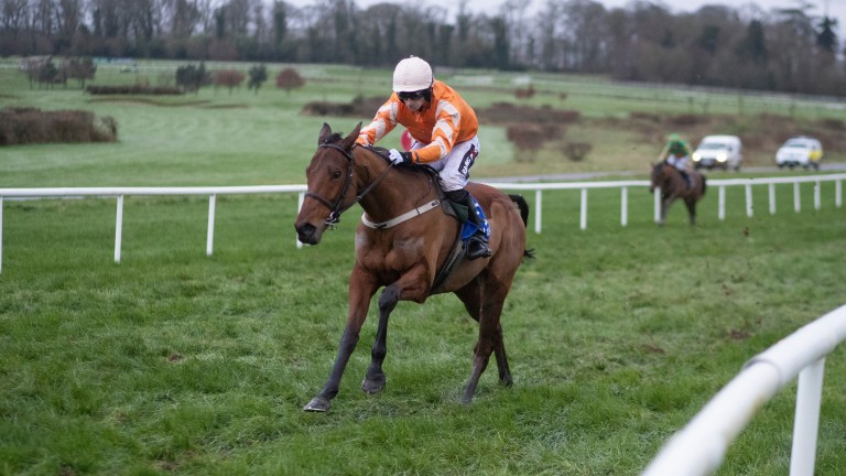 Blue Sari looks special in bolting up at Gowran Park