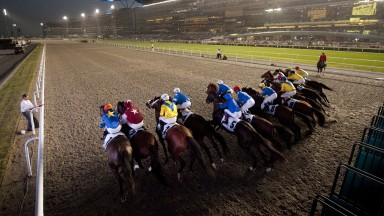 Meydan 27.3.10 Pic:Edward WhitakerThe runners in the UAE Derby break from the stalls