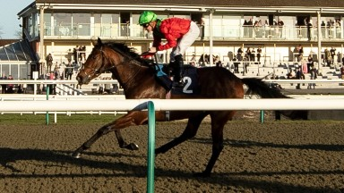The John Gosden-trained Baltic Song wins the 1m4f novices stakes at Lingfield
