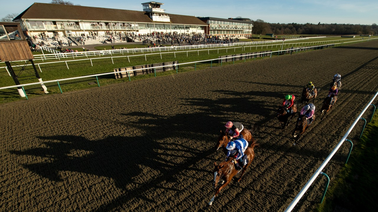 Arena boycott could still be on as Lingfield Wednesday card