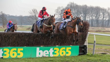 Crosspark (left) and Mysteree lock horns in the Eider Chase