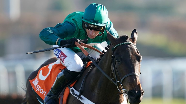Fusil Raffles: has been ruled out of the Cheltenham Festival
