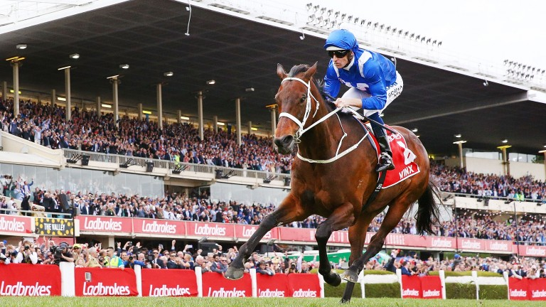 Winx: has her final race of a stellar career on Saturday