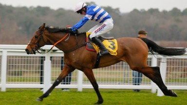 Another Grade 1 success for Cobden on Cyrname at Ascot this month