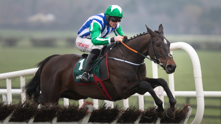 Chosen Mate clears the last on the way to Grade 2 honours at Naas on Sunday