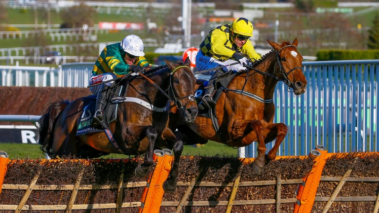 Buveur D'Air (left) defeated Melon to win last year's Champion Hurdle