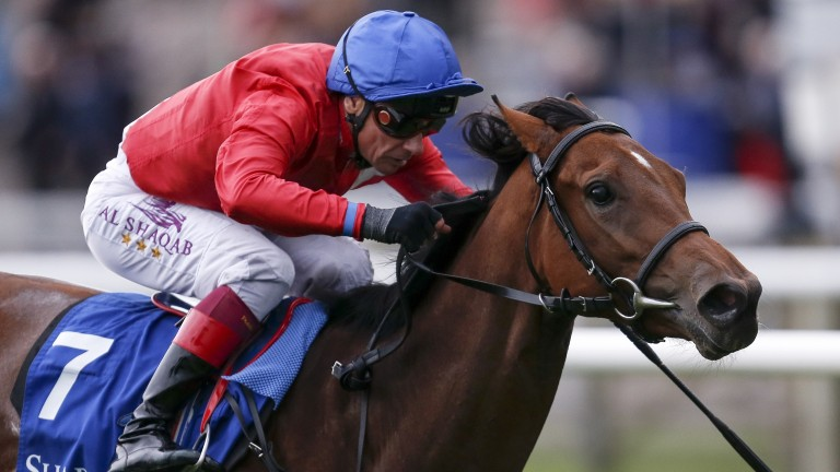 Juliet Capulet: the Rockfel Stakes winner is set to visit Siyouni for her maiden covering