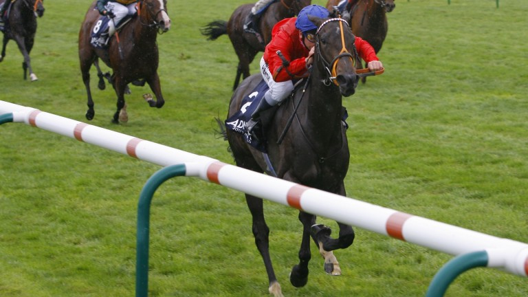 Cheveley Park Stakes heroine Hooray is due to be covered by leading speed sire Acclamation
