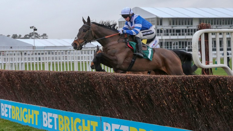 """Frodon: """"We haven't run since [the Cotswold Chase] purposely to keep him fresh and well"""""""
