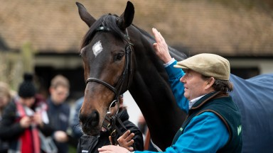 Champions both: Altior and an admiring Nicky Henderson