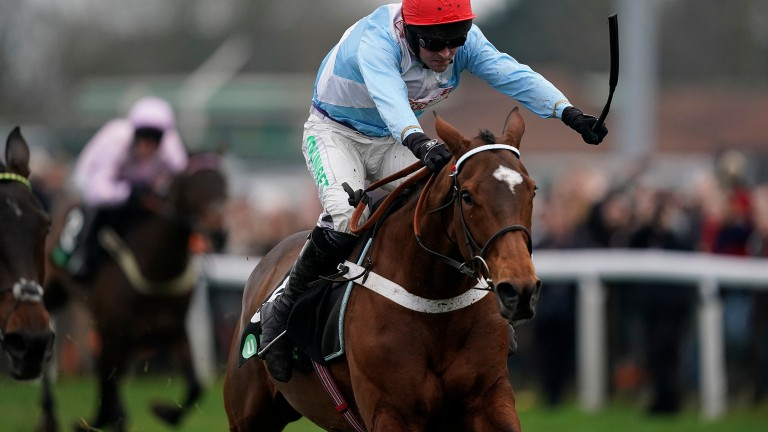 Verdana Blue: missed out at Aintree last week