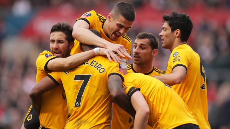 Wolves could be celebrating