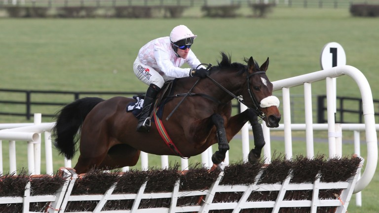 Emily Moon: the relation to Best Mate wins a 25-runner maiden hurdle at Naas