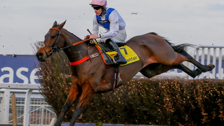 Waiting Patiently: Cheltenham comes too soon for him after Ascot exertions