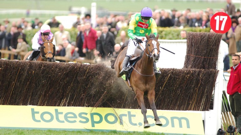 Kauto Star ran five times in the season leading up to his Gold Cup triumph in 2007