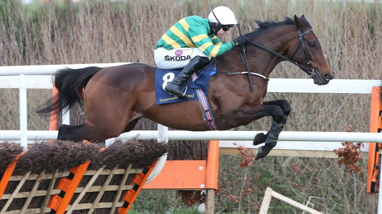 Sir Erec: Triumph Hurdle favourite will find his way into plenty of Yankees and Lucky 15s