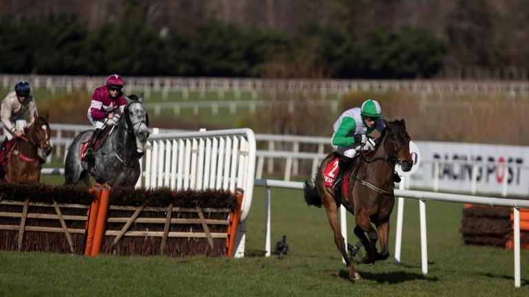 Zero Ten: in winning action over hurdles at Leopardstown