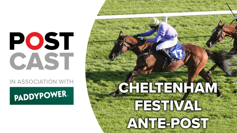 Ante-post betting for the Coral Cup and Martin Pipe Handicap Hurdles