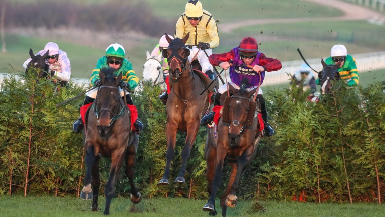 Amazing Comedy (yellow silks) ran a fine race on his first trip to Cheltenham last December, finishing a close-up fourth to Fact Of The Matter