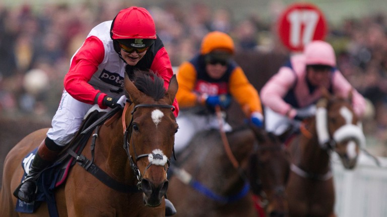 Not quite Olympic gold: Victoria Pendleton rides Pacha Du Polder to fifth place at the Cheltenham Festival