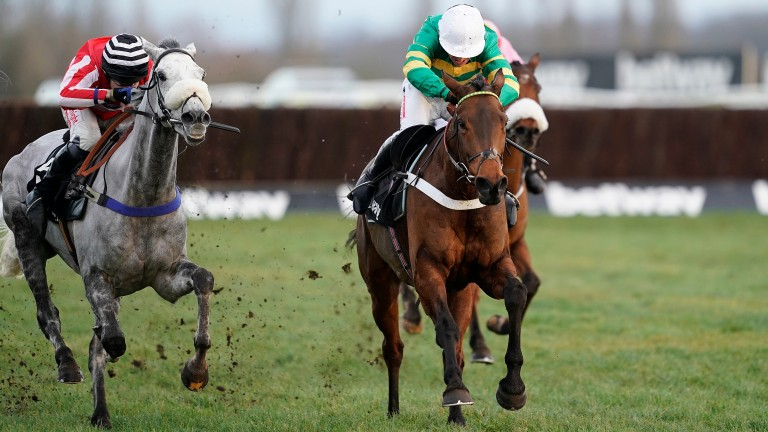 Champ: favourite for the Ballymore Novices' Hurdle
