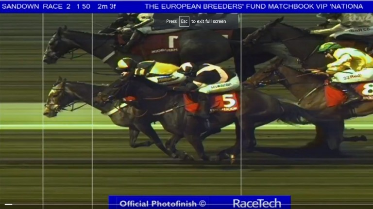 One For Rosie (far side) is in front but the image has not been taken at the correct winning line