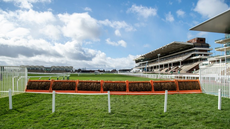 The Champion Hurdle's final flight and the climb to the line awaiting the field on Tuesday