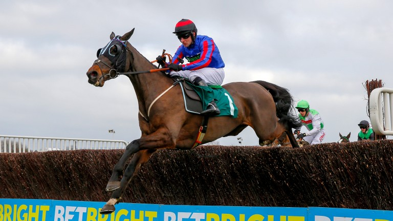 Beware The Bear: was one of three Henderson-trained horses heading to Aintree