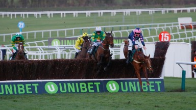 Le Breuil (Jamie Codd, purple) survives this blunder to lead home three other finishers in the NH Novices' Chase for amateur riders at Cheltenham on Tuesday