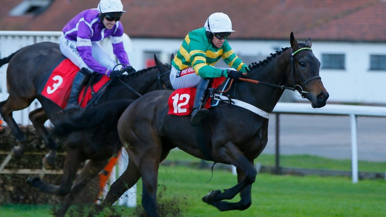"""Epatante: """"We have kept her away from anything too grand so we didn't get a penalty"""""""