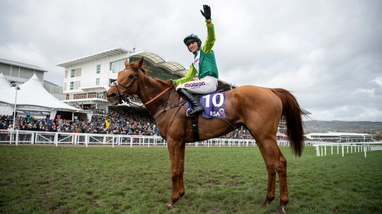 Topofthegame: Harry Cobden salutes the crowd after his mount won the RSA Chase, dispelling doubts over his temperament