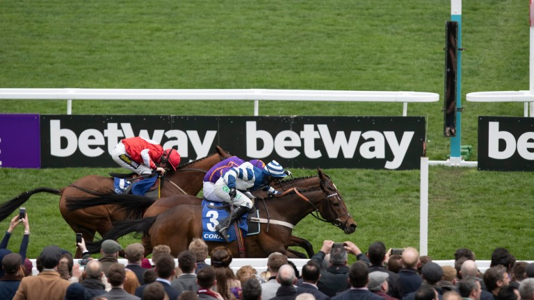 William Henry (near side): edges out Wicklow Brave in a thrilling finish to the Coral Cup