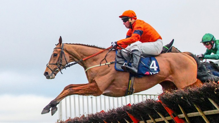 Sam Spinner was the beaten favourite in last year's Stayers' Hurdle
