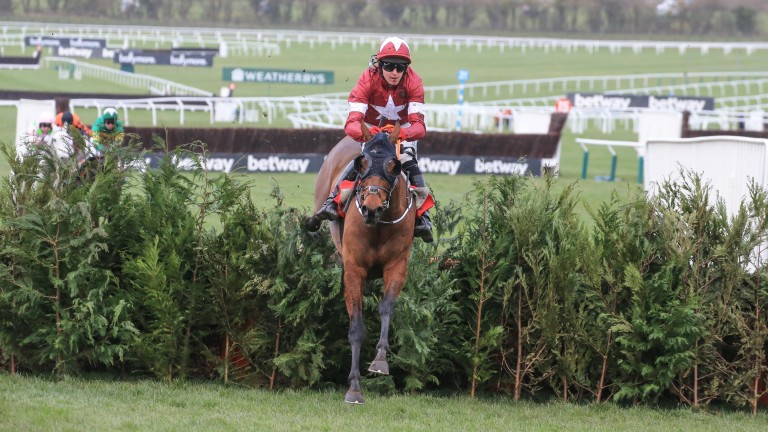 Tiger Roll: has made the Cross Country Chase his won in recent years